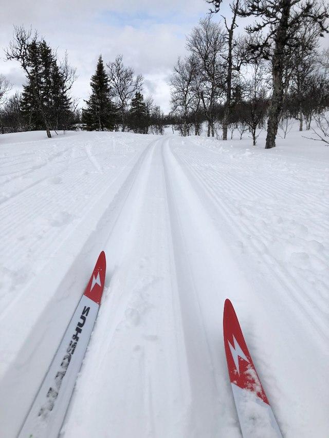 Längdåkning Tärnaby