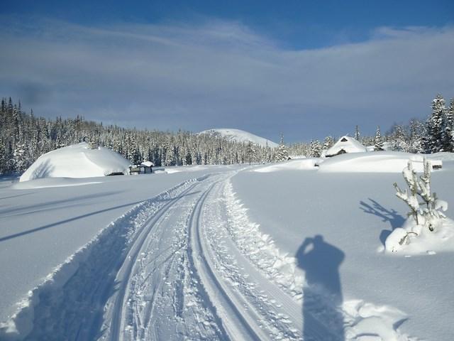Konferanse - Vinter