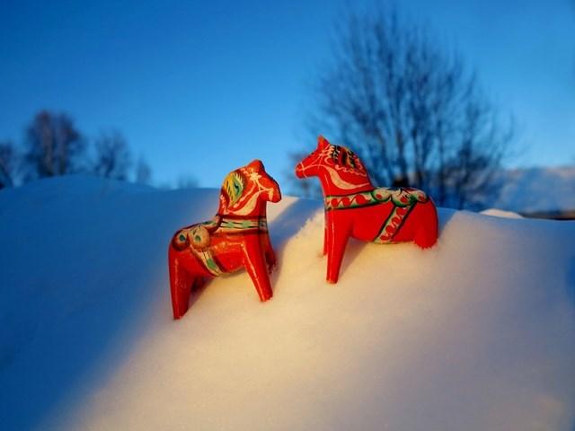 Julerbjudande för masar & kullor, 2 dygn