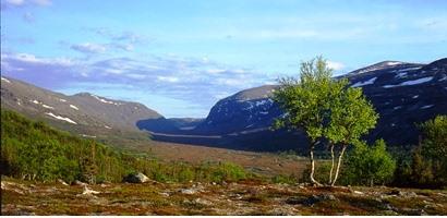 Vandring på Hög höjd med guide 6-11 juli