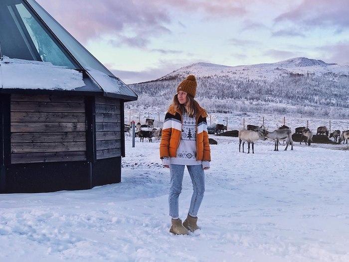 Arctic Land Adventuren lasi-iglut Vasaran porotilalla