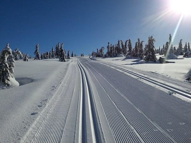 Skihelg på Nordseter i januar