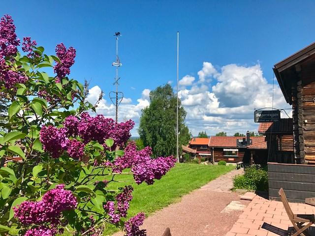 Ingels Hörna med Linda Bengtzing